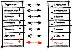 The OSI model has seven levels