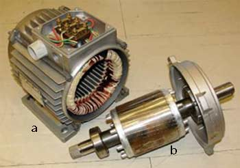 Synchronous and asynchronous electric motors form the basis for the classification of all electric motors. a - stator, b - rotor of induction motor