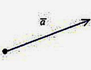 To the question: what is the vector? - usually answer: this is a mathematical value that has a size and direction